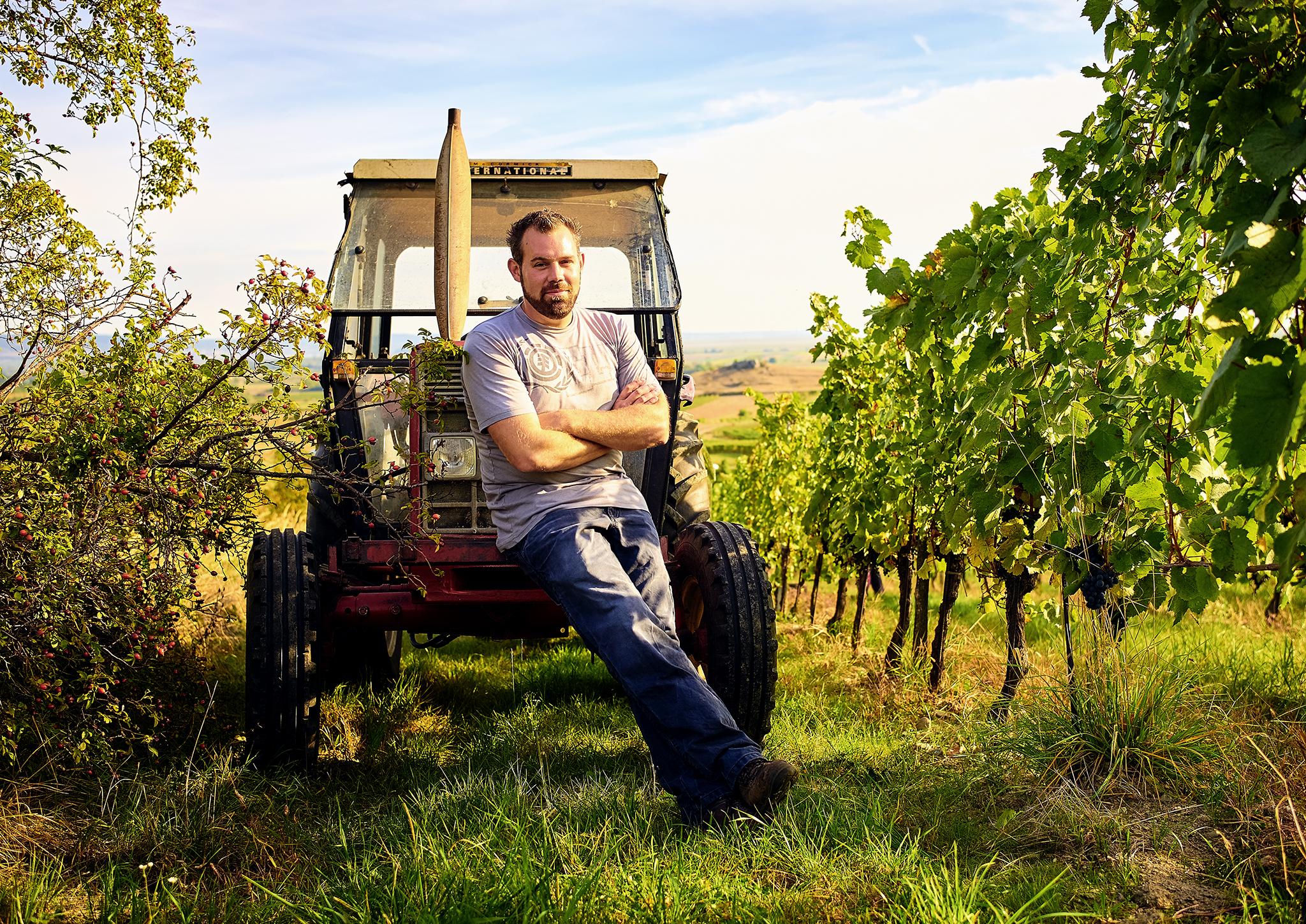 Martin Reinfeld: Kreide und Salz der Landschaft im Wein